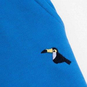 Шорты ДМ Количество в упаковке: 1; Артикул: BN-312Л21-461-С; Цвет: Синий; Ткань: Футер 2-х нитка; Состав: 100% Хлопок; Цвет: Синий   Зелёный Скачать таблицу размеров