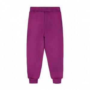 Брюки Количество в упаковке: 1; Артикул: BN-496К-461-Ф; Цвет: Фиолетовый; Ткань: Футер 2-х нитка; Состав: 100% Хлопок; Цвет: ФиолетовыйСкачать таблицу размеров