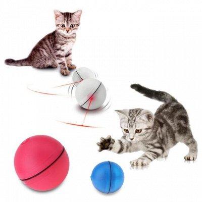 Мурр-маркет! Крутые лежанки Снова в продаже! — Новинка! Лазерный шар-игрушка для кошек Magic Led-Ball — Игрушки
