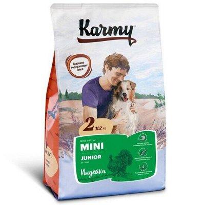 Корм для кошек и собак из высококачественного сырья — Корм для собак Karmy — Корма