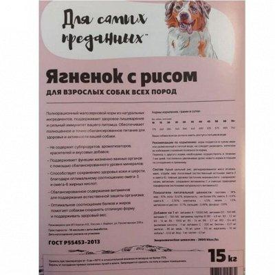 """Корм для кошек и собак из высококачественного сырья — Корм для собак """"Для самых преданных"""" — Корма"""