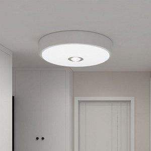 Потолочная лампа диаметром 250 мм