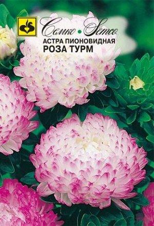 Астра пионовидная Роза Турм  0.5 г