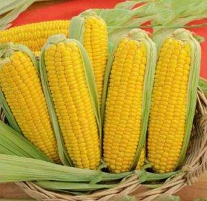 Кукуруза сахарная Тройная сладость (200% NEW) (8г)