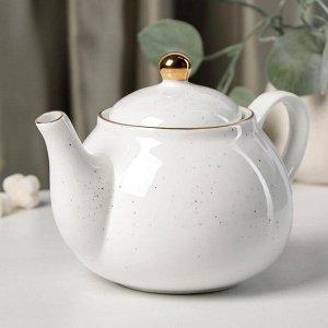 Чайник заварочный Доляна «Млечный путь», 900 мл, 20×13,5×14 см, цвет белый в крапинку