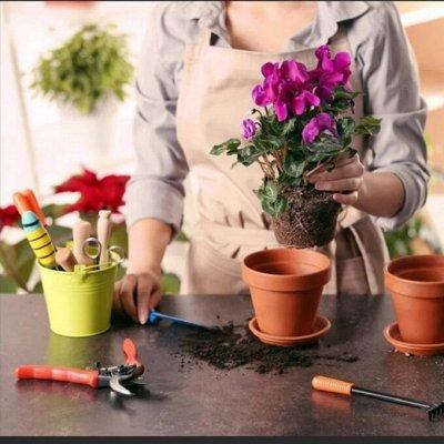 Японские удобрения для цветов,защита от насекомых и болезней