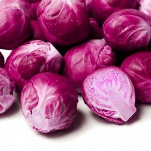 Капуста брюссельская Рубиновый гурман 0,1г (Декоративный огород) Поиск