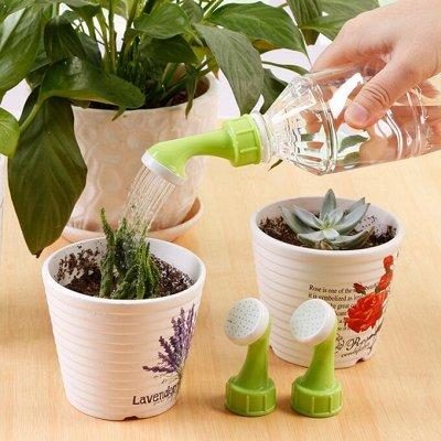 Японские удобрения для цветов, защита от насекомых и болезней — Препараты от болезней растений