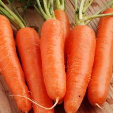 Морковь Без сердцевины Пралине (Вкуснятина) (200шт)