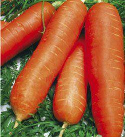 Морковь Детская сладкая 2г Сибирский сад