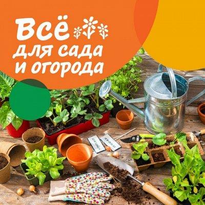 Все для Вашего дома🔸Бытовая техника Электротовары — Все для Сада и огорода. Все на дачу — Сад и огород