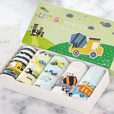 Японские носки, корейское белье, колготки. Супер качество — Трусики для мальчиков. Корея. Хлопок