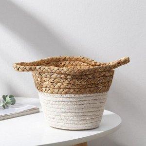 Корзина для хранения плетёная Доляна «Мэни», 20?20?15,5 см, цвет белый