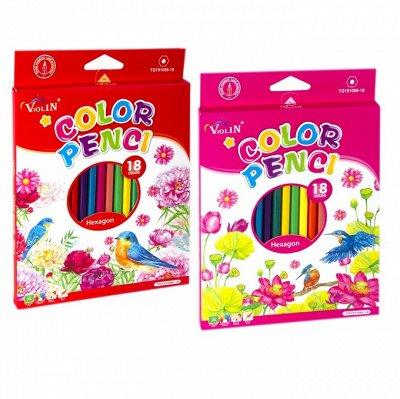 Алин*гар - громадный выбор канцелярии — Цветные карандаши — Домашняя канцелярия
