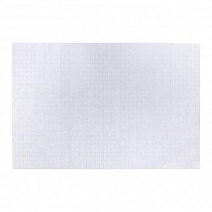 Плёнка самоклеящаяся 50 х 36 см, 80 мкм, 10 листов «StopМикроб», прозрачная, с антимикробным покрытием