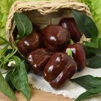 Перец сладкий Трюфелек Шоколадный F1 (Вкуснятина) (8шт)