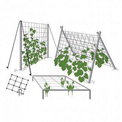 ⚜Контейнеры, баночки и ящики для хранения! Цена супер! — Всё для сада и огорода — Садовый инвентарь