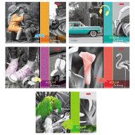 """Альбом для рисования 20л., А4, на скрепке Hatber """"Изысканность цвета"""""""