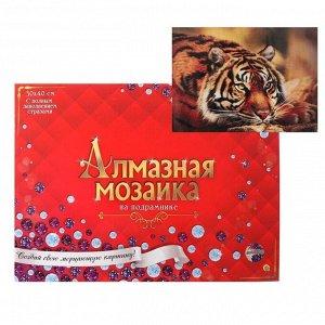 Алмазная мозаика 30х40 см, с полным заполнением, 27 цв. «Задумчивый тигр»