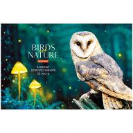 """Альбом для рисования 32л., А4, на скрепке ArtSpace """"Животные. Birds and nature"""""""