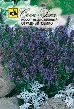 Иссоп лекарственного Отрадный Семко 0,2 г
