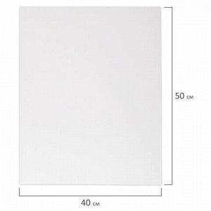 Холст 3D на подрамнике BRAUBERG ART CLASSIC 40х50см, 440г/м, грунт, 100% хлопок мелкое зерно, 191664