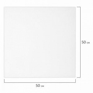 Холст 3D на подрамнике BRAUBERG ART CLASSIC 50х50см, 440г/м, грунт, 100% хлопок мелкое зерно, 191665
