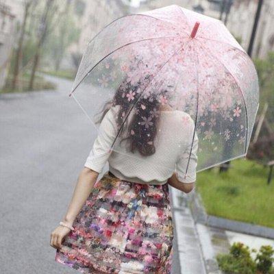 Идеальная хозяюшка❤️Всё что нужно для уборки  — Зонты/Дождевики — Аксессуары