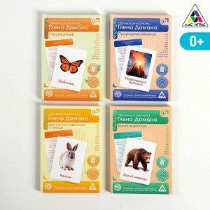 Обучающие карточки по методике Глена Домана, А6, «МИКС №2»