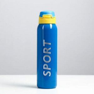 "Термос ""Спорт"" с поильником, 500 мл, 5.5x23 см, синий"