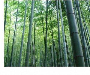 Бамбуковые салфетки выдергушки 240 шт