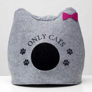 "Домик для животныx из войлока ""Ушастик ONLY CATS"", 46 x 46 x 43 см"