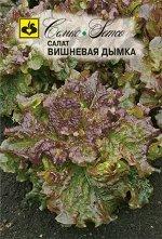 Салат листовой Вишневая Дымка  1 г