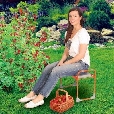 Удобная закупка. Все в одном месте, швабры, канц. товары… — Скамейка перевертыш. Отличное решение для садоводов