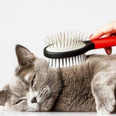 Идеальная хозяюшка❤ ️Всё что нужно для уборки — Уход за шерстью