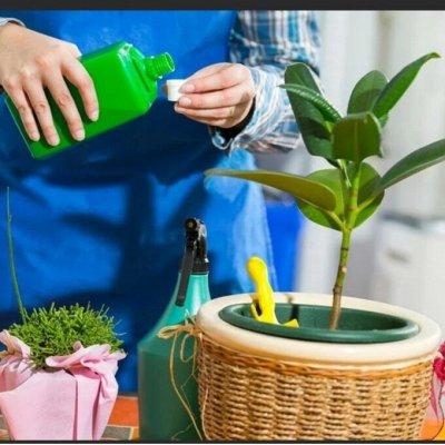 Японские удобрения для цветов, защита от насекомых и болезней — Стимуляторы роста