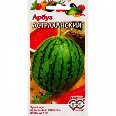 СТЕЛЬКИ👟ВСЁ ДЛЯ ОБУВИ — СЕМЕНА ОВОЩЕЙ, БАХЧЕВЫХ — Семена овощей
