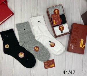 Носки В Упаковке 3 шт , размер один , разные цвета
