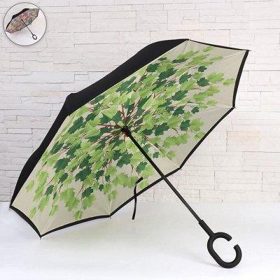Зонты и дождевики. Товары для дома — Зонты и дождевики