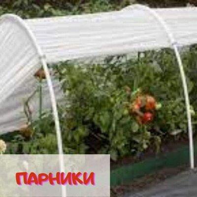 Посуда достойная Вашего дома! Майские скидки! — Парники, колышки для растений — Парники и теплицы