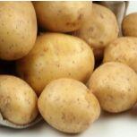 Картофель семенной в наличии и в пути — Картофель семенной Элита (Германия) в пути — Семена овощей