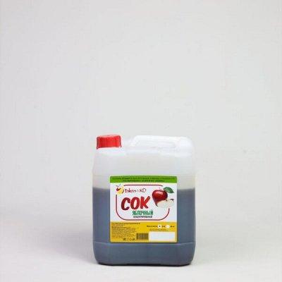 Концентрированные соки❋Натуральный и вкусный продукт!Без ГМО — Соки концентрированные 5кг  — Соки и нектары