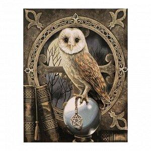 Роспись по холсту «Магическая сова» по номерам с красками по 3 мл+ кисти+инстр+крепеж, 30 ? 40 см