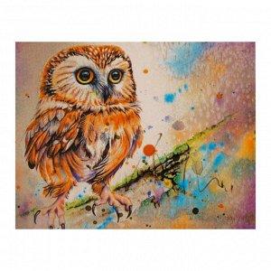 Роспись по холсту «Яркая сова» по номерам с красками по 3 мл+ кисти+инстр+крепеж, 30 ? 40 см