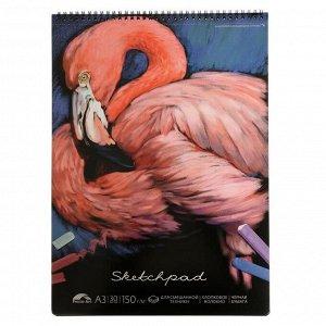 """Альбом для пастели А3, 30 листов на гребне """"Фламинго"""", твёрдая обложка, шелкография, софт-тач, чёрный блок с хлопковым волокном 150 г/м2"""
