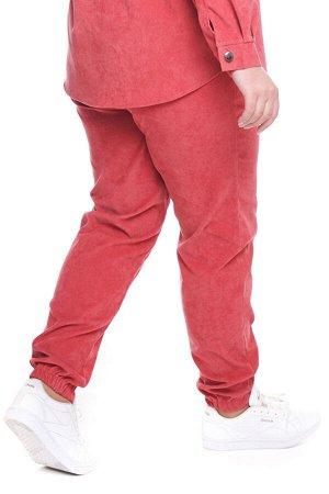 Брюки-4742 Модель брюк: Джоггеры; Материал: Микровельвет;   Фасон: Брюки; Параметры модели: Рост 173 см, Размер 54 Брюки микровельвет розовые Длина изделия 50 размера по спинке 98 см. В каждом следующ