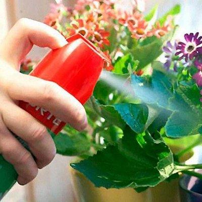 Распродажа семян, удобрений и садового инвентаря — Удобрения для комнатных растений