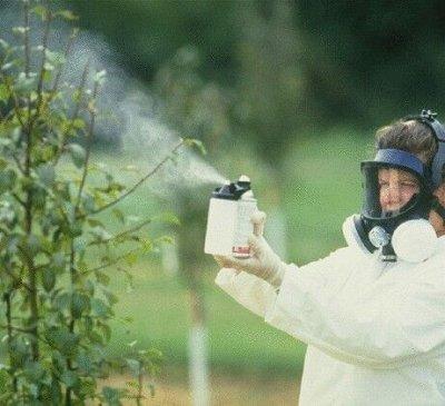 Распродажа посадочного материала! Огромный выбор! — Защита от вредителей — Защита от вредителей