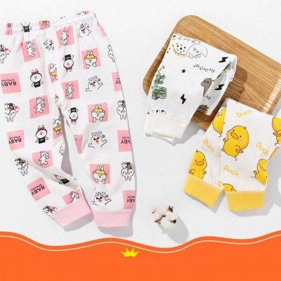 👼Недорогая одежда для малышей. Костюмы 320 руб — Хлопковые штанишки — Брюки