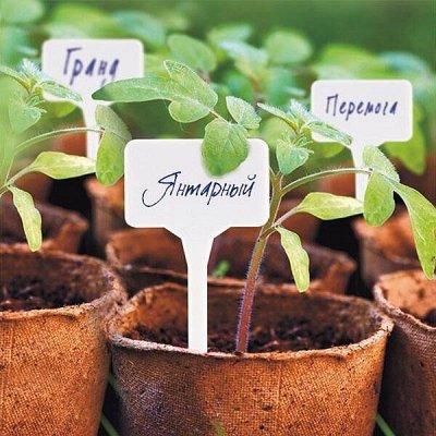 Распродажа семян, удобрений и садового инвентаря — Бирки, указатели